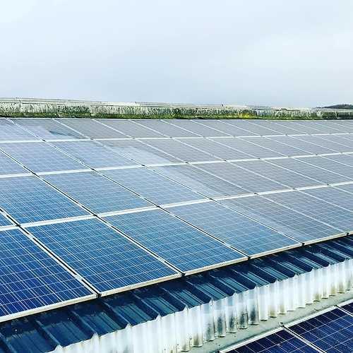 Nettoyage de 700m2 de panneaux photovoltaïques à Loudéac 0